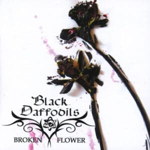 BLA46 -Black Daffodils -Broken Flower